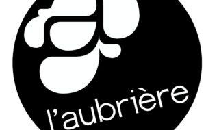 logo noir simple 2